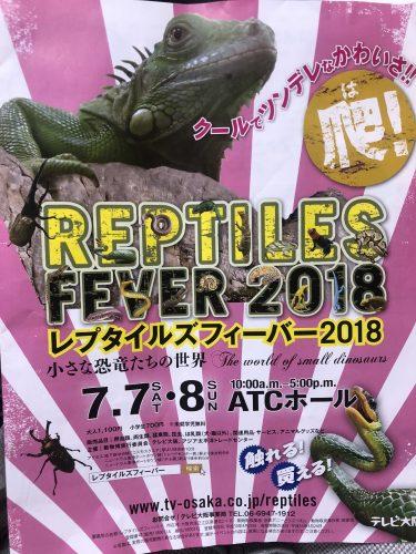 爬虫類イベントのレプタイルズフィーバーに行ってきました!IN ATCホール