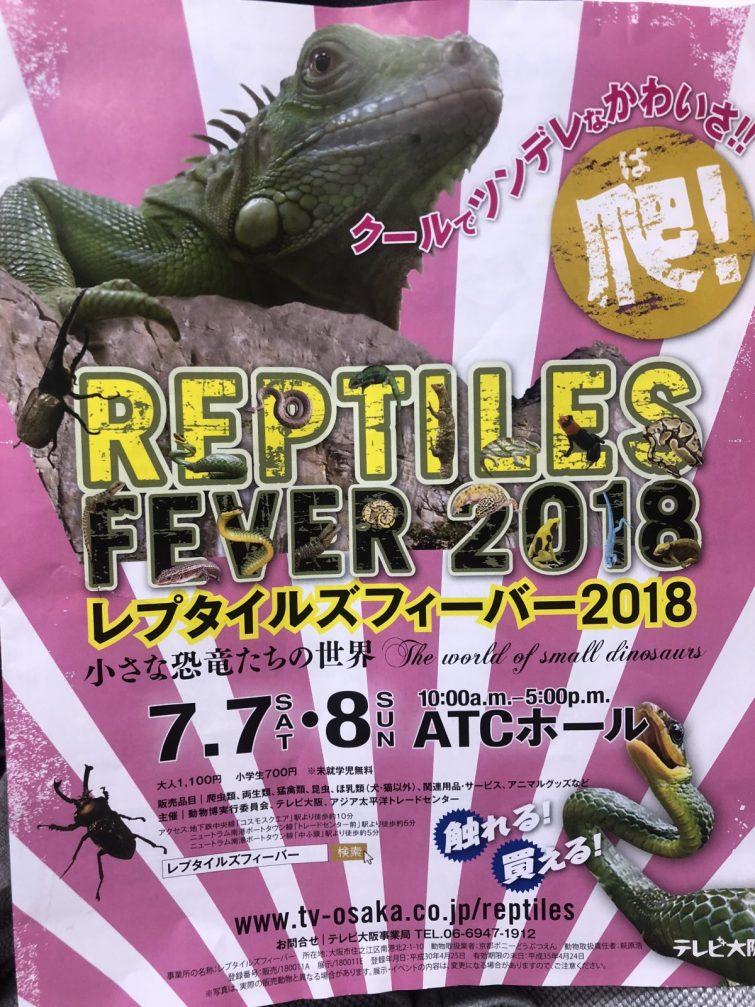 イベント 大阪 爬虫類 爬虫類イベント2020