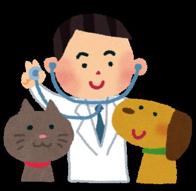 猫システムトイレは最強!獣医師がおすすめする理由と特徴や種類を解説